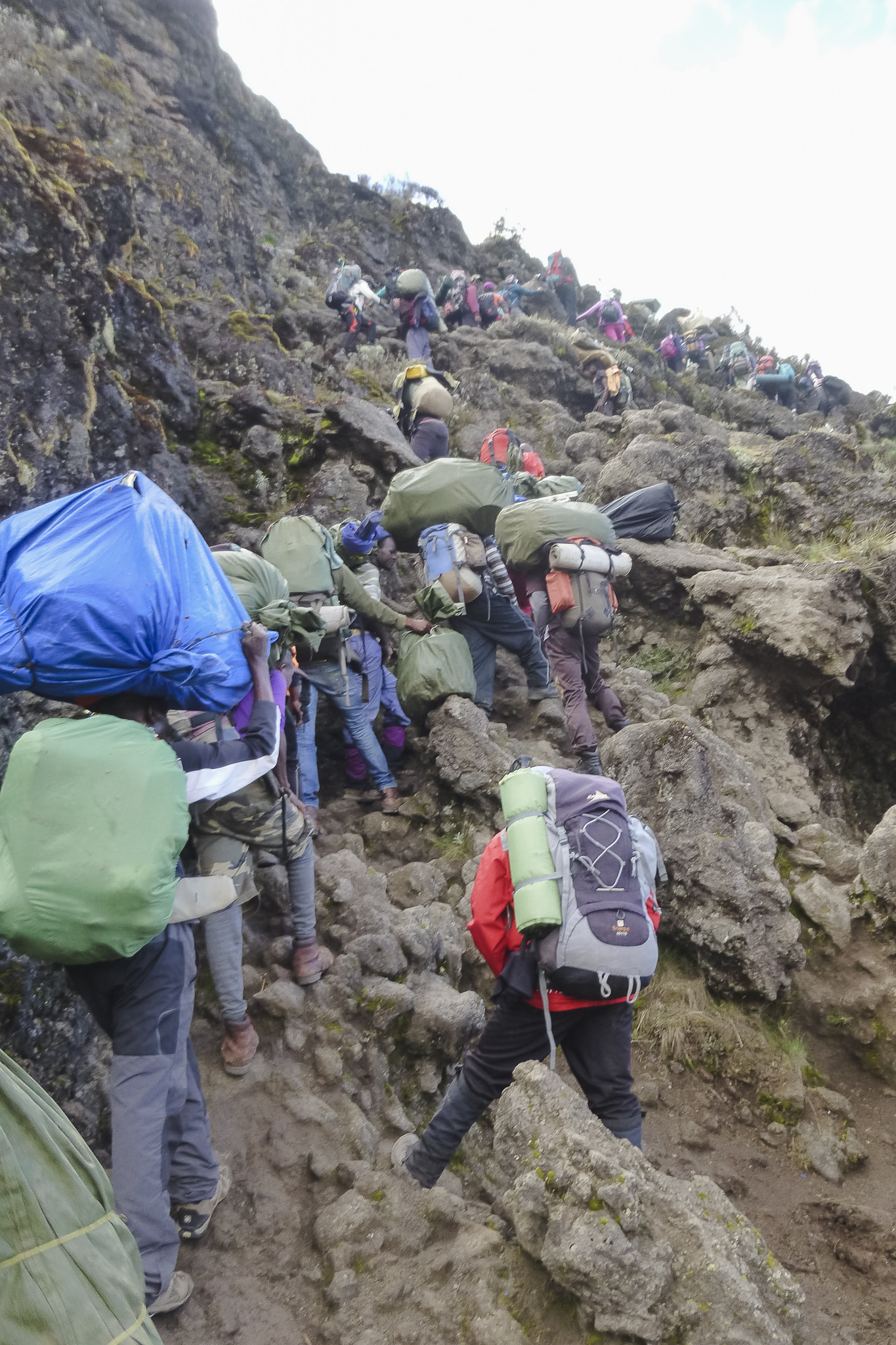 Kilimanjaro - 123