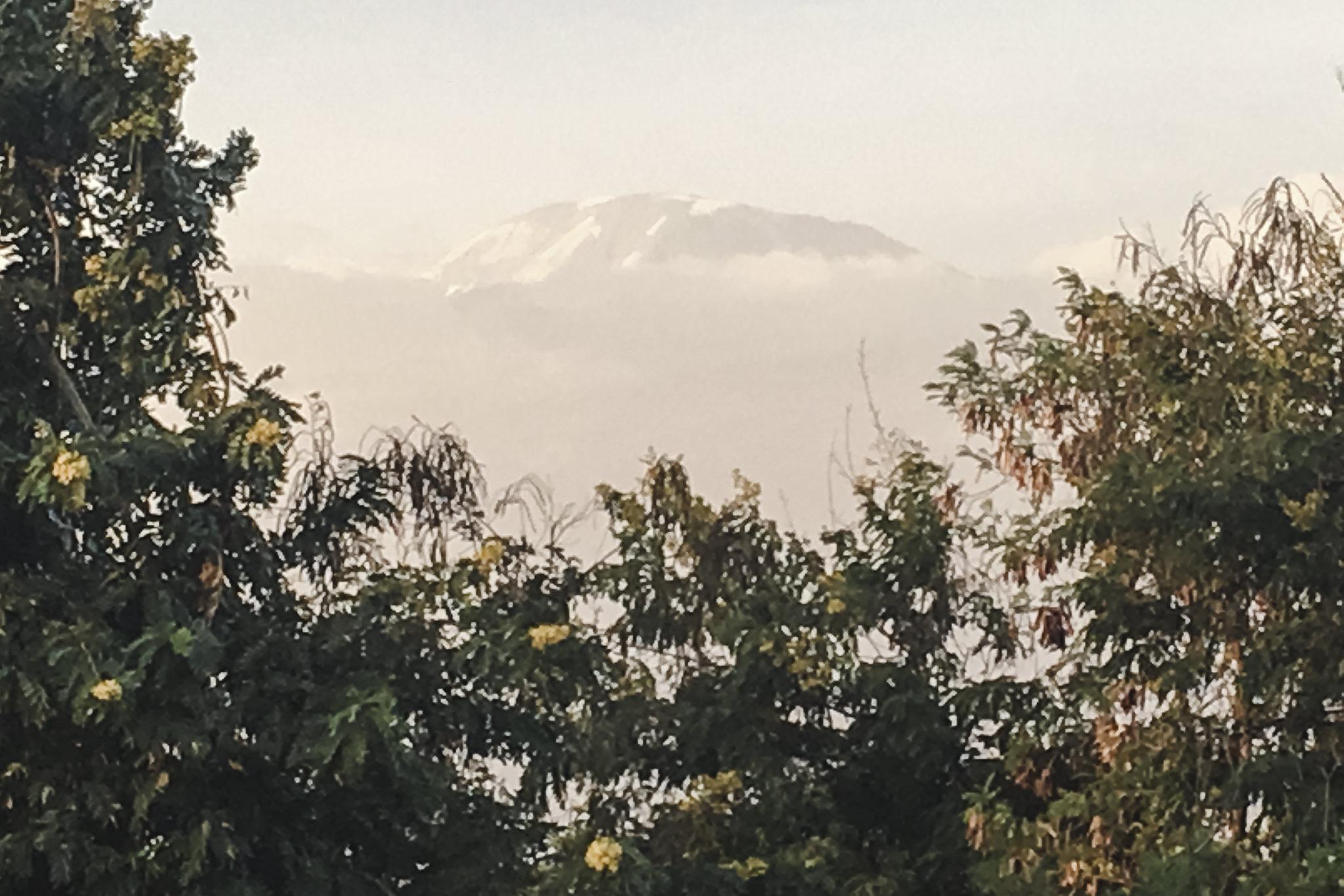 Kilimanjaro - 13
