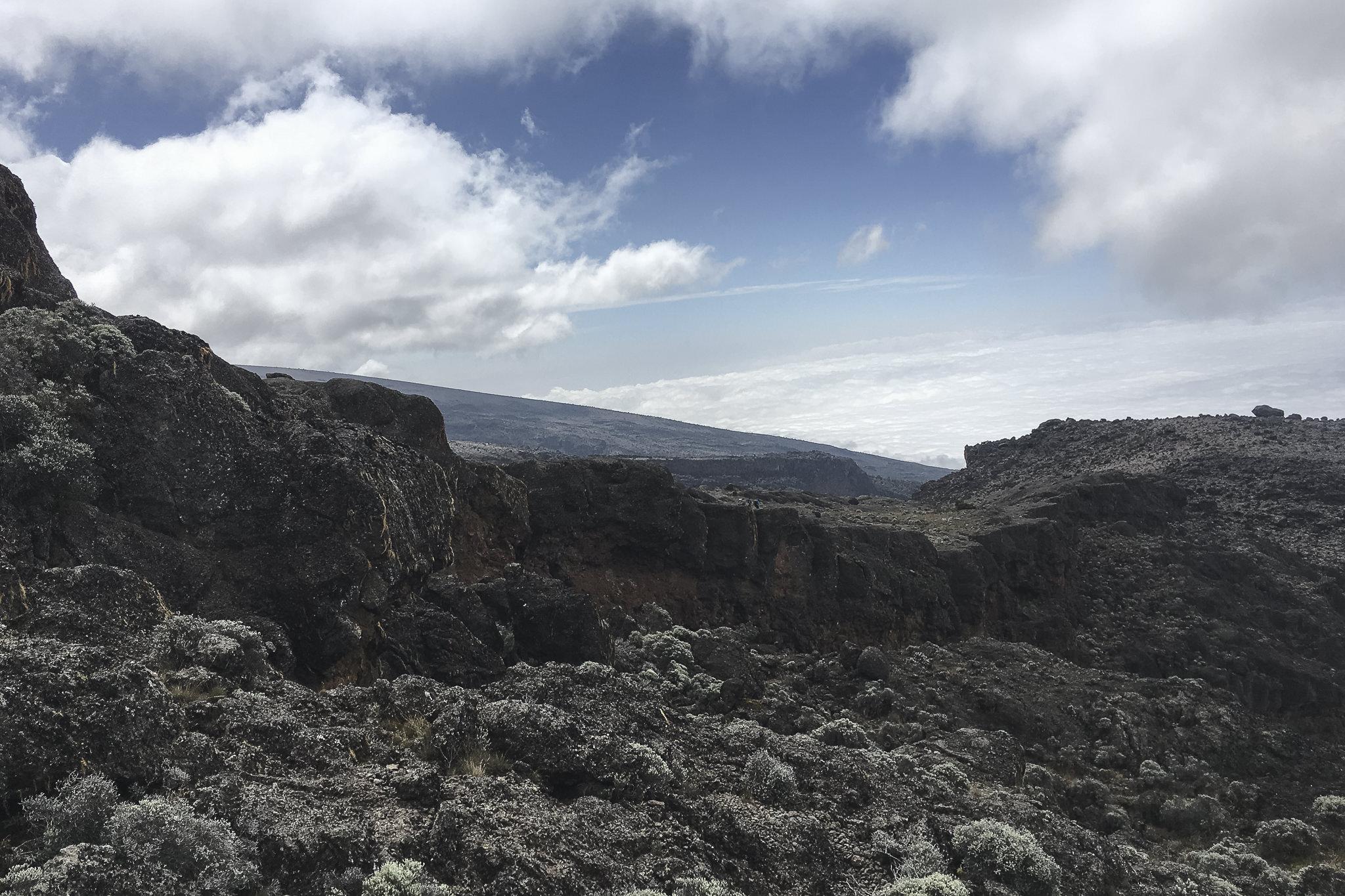 Kilimanjaro - 146