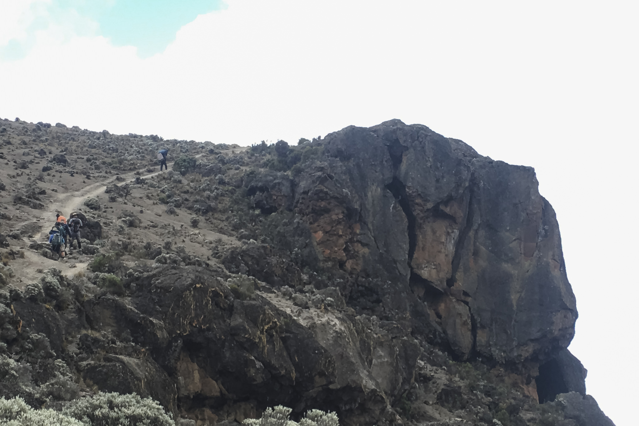 Kilimanjaro - 157
