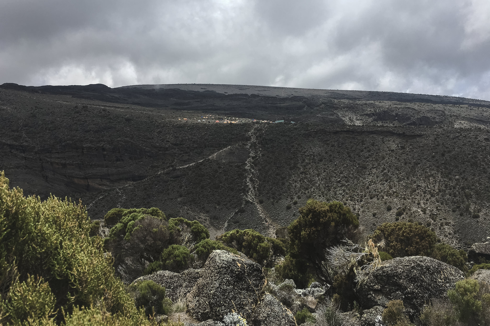 Kilimanjaro - 159