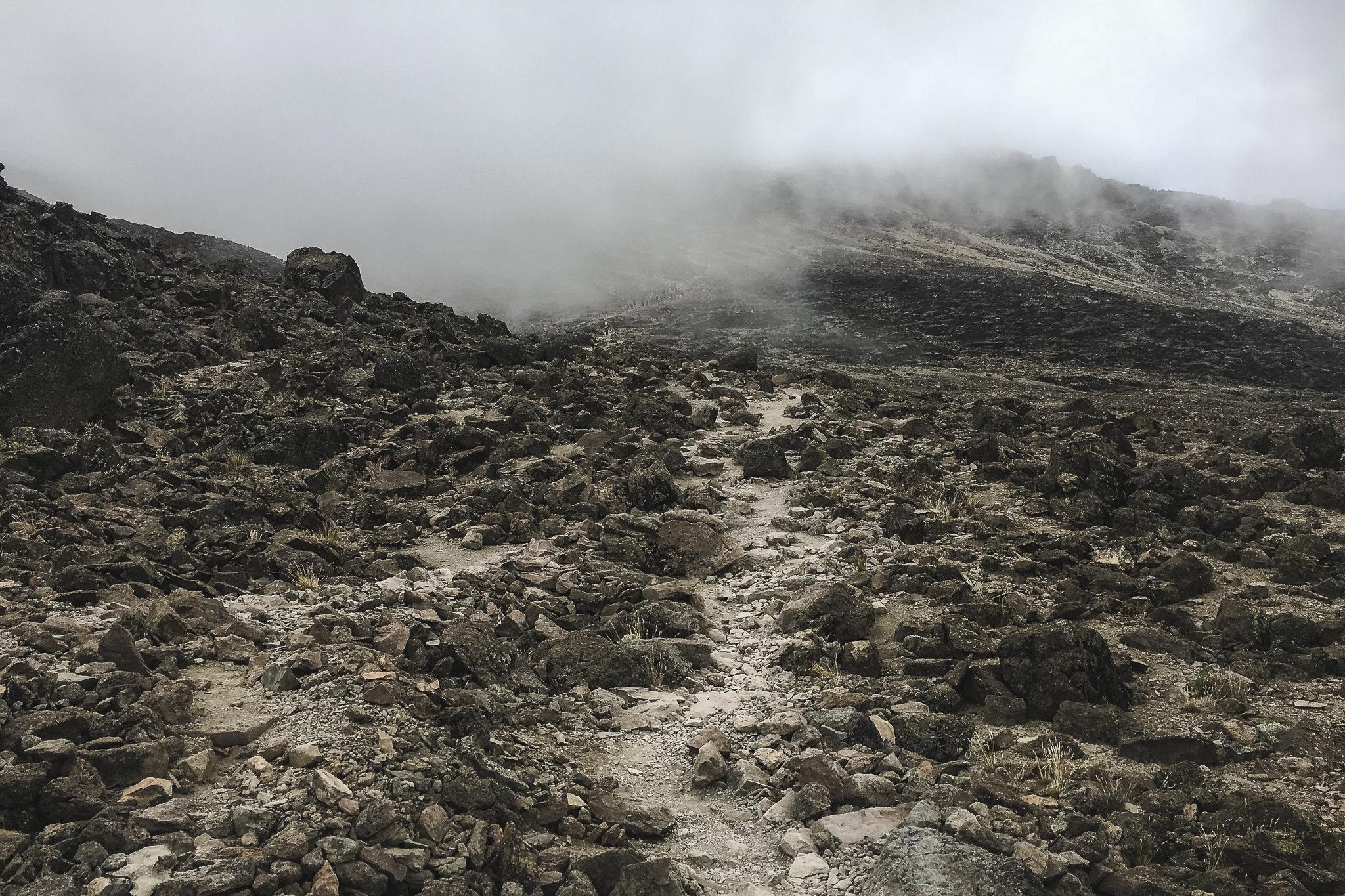 Kilimanjaro - 194
