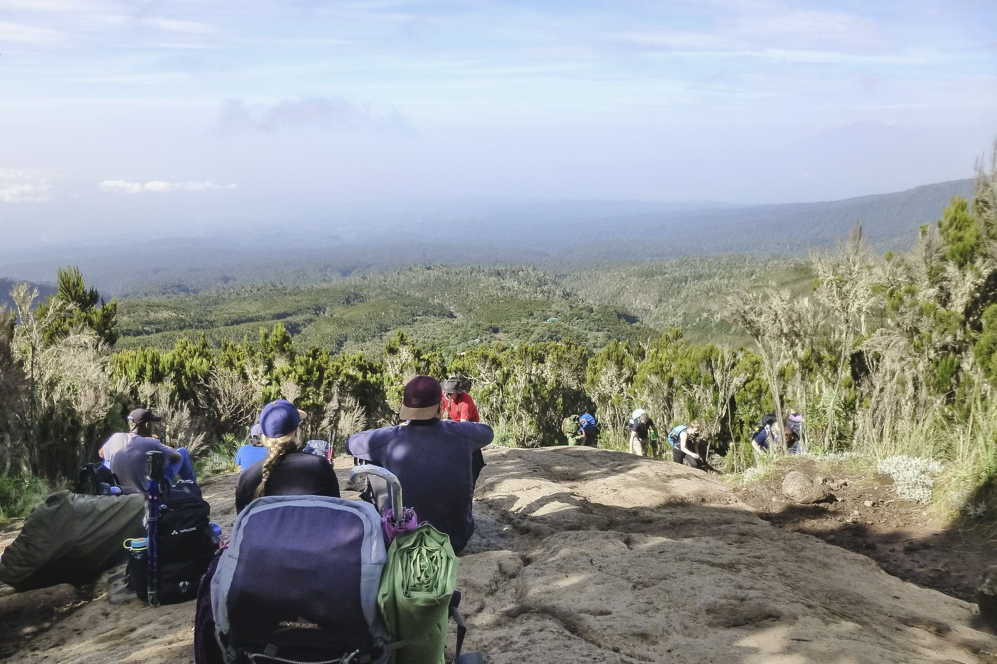 Kilimanjaro Tag 2 - der Aufstieg geht weiter
