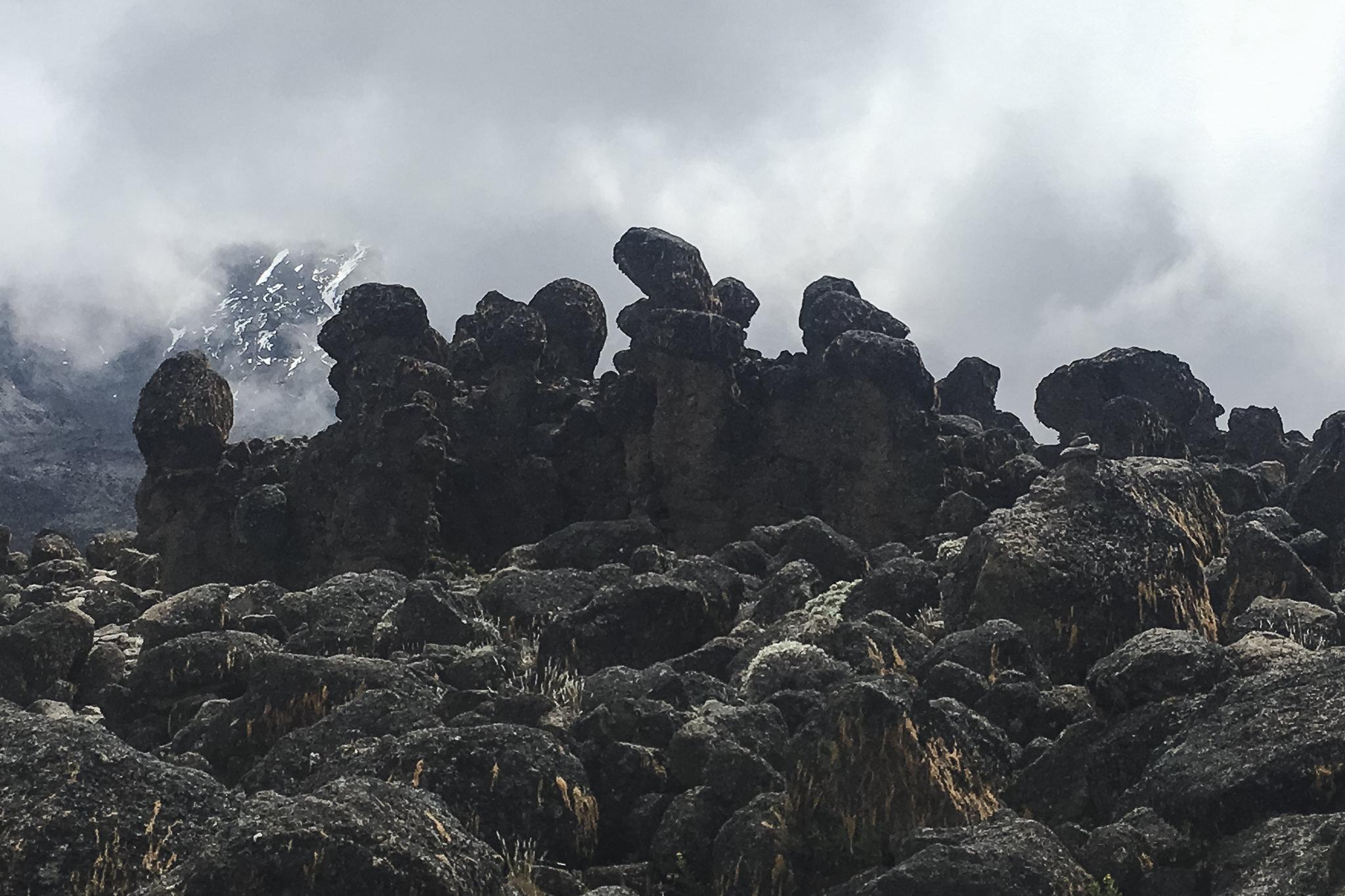Kilimanjaro - 95