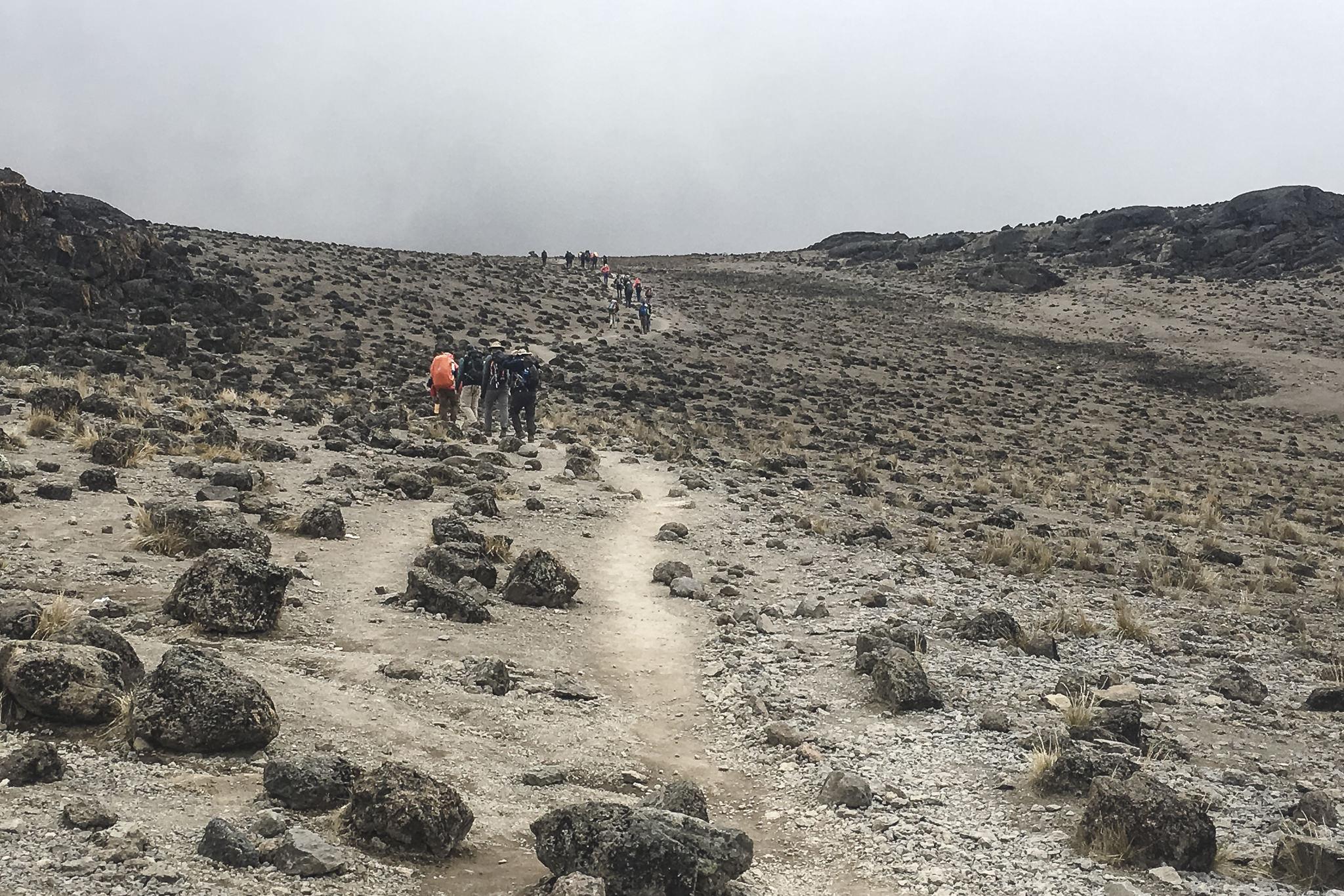 Kilimanjaro - 96
