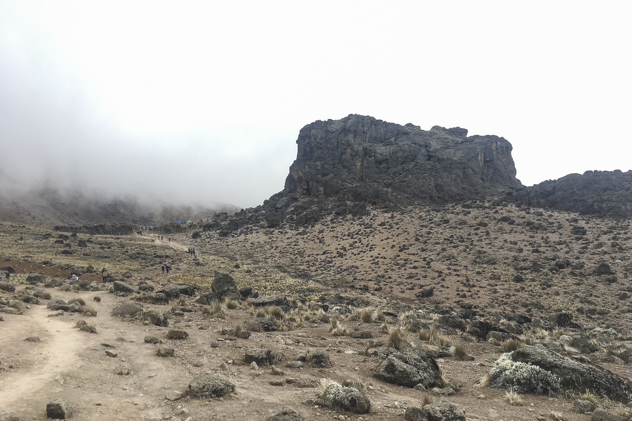 Kilimanjaro - 98